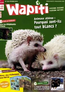 Albinos en vue ! / Nadège Joly | Joly, Nadège