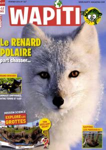 Le Renard polaire part à la chasse / Nadège Joly | Joly, Nadège
