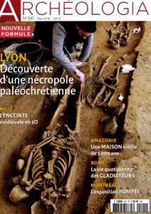 Amazonie. Une archéologie en plein essor / Stéphen Rostain | Rostain, Stéphen
