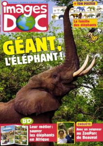 Il faut sauver les éléphants ! / Nathalie Tordjman | Tordjman, Nathalie